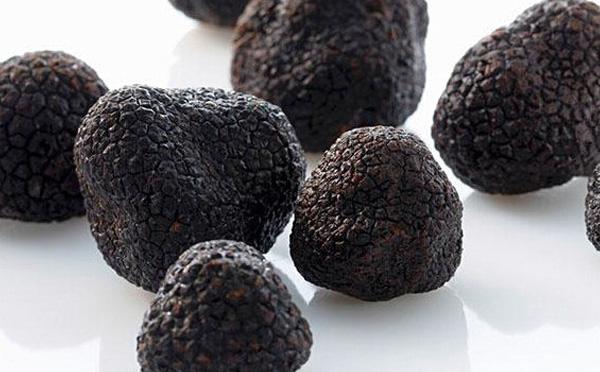 黑松露可以生吃吗
