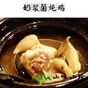 奶浆菌炖鸡