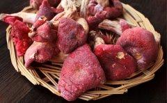 红菇的营养成分以及怎么识别