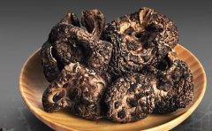 怀孕或者孕妇可以吃黑虎掌菌吗