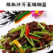 辣椒炒芹菜珊瑚菌