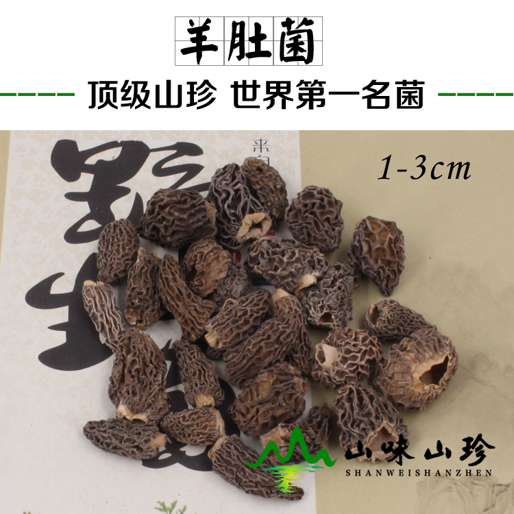 野生羊肚菌1-3cm 小个