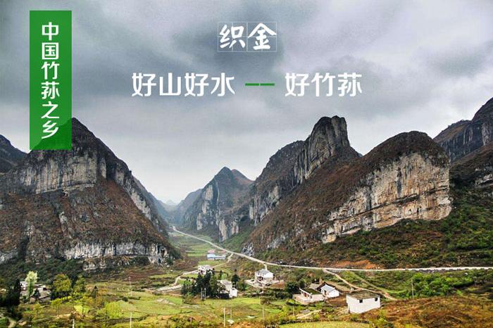中国竹荪之乡