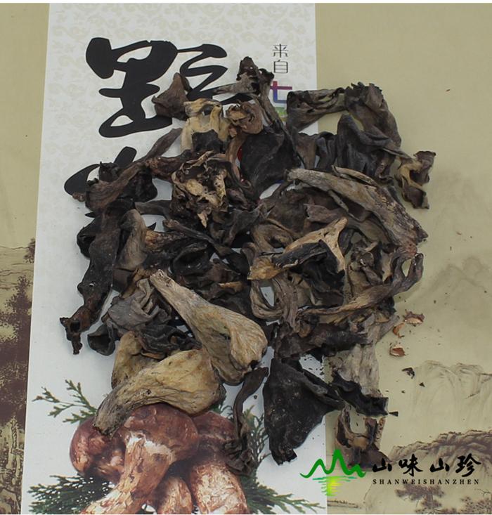 黑喇叭菌实拍图