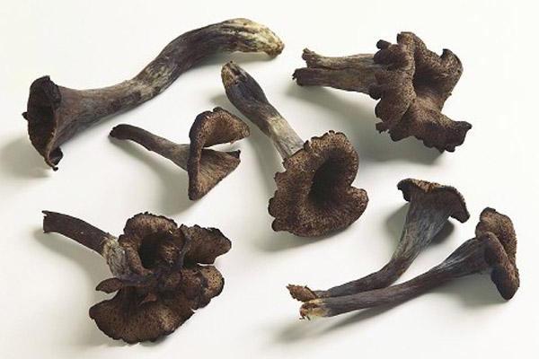 酸菜炒黑喇叭菌怎么做最好吃